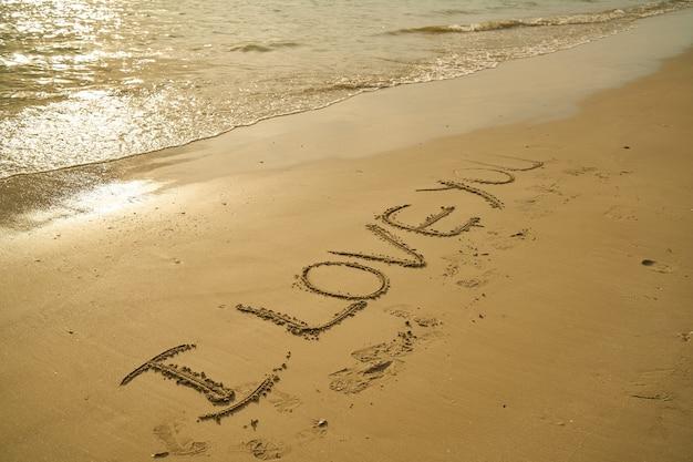 Zinsnede I Love You Geschreven In Het Zand Foto Gratis Download