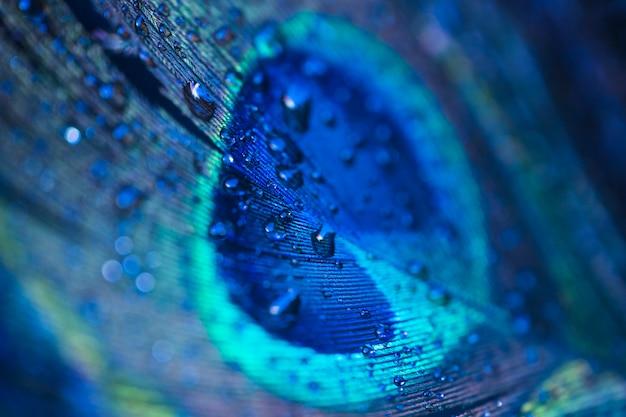 Zoet waterdalingen op de achtergrond van de pauwveer Premium Foto