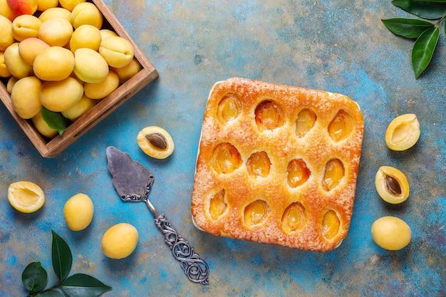 Zomer abrikozenpastei zelfgemaakte heerlijke fruit dessert Gratis Foto