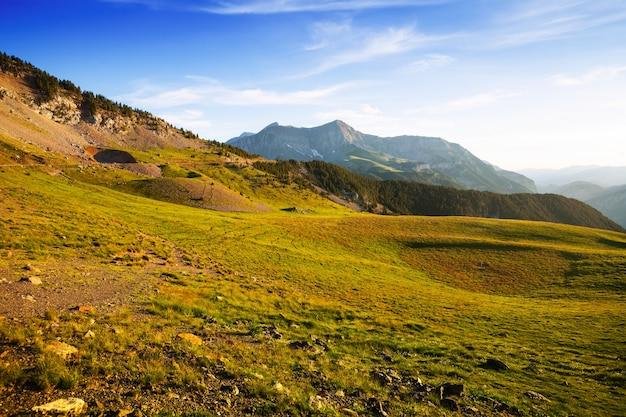 Zomer uitzicht op hoogland weide Gratis Foto