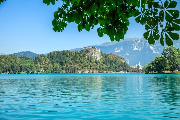 Zomertijd en een meer ziet er prachtig uit Gratis Foto