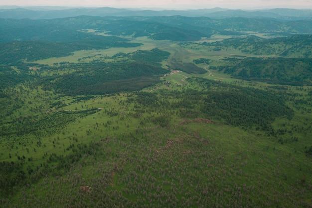 Zonnige dag in een naaldbos, op de achtergrond een berg met een bergketen, groene velden en een blauwe lucht Premium Foto
