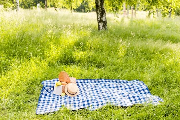 Zonnige weide met geruite plaid die op gras voor picknick wordt uitgespreid Gratis Foto