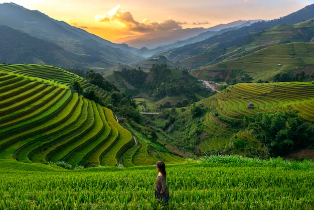 Zonsondergang bij riceteraces mu cang chai, yenbai, vietnam. Premium Foto