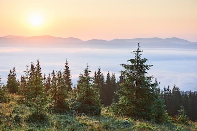 Zonsondergang in het landschap van bergen. dramatische lucht. karpaten van oekraïne europa. Gratis Foto