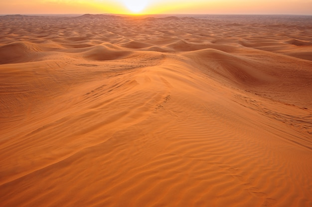 Zonsondergang in het woestijnzand Premium Foto