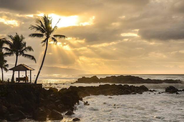 Zonsondergang over golven die binnen op de rotsen bij het strandpark van uppers op de het noordenkust van oahu binnen wassen Premium Foto