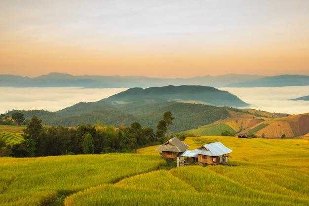 Zonsopgang op terrasvormig paddy field in mae-jam village Premium Foto