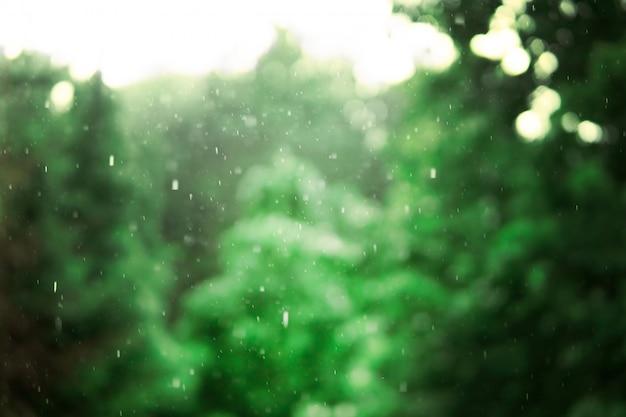 Zware regen op de achtergrond van groene bomen. landschap in het natte bos. Premium Foto