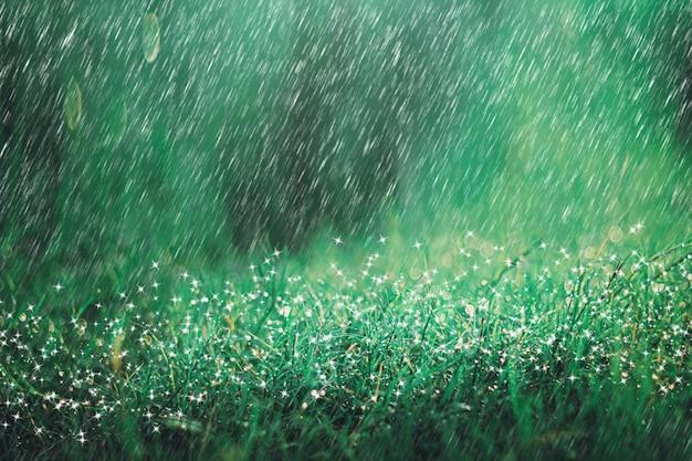 Zware regendouche op weideachtergrond met fonkeling en bokeh. regent in de natuur. Premium Foto