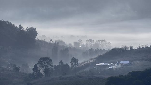 Zwart en wit berg en mist achtergrondbehang Premium Foto