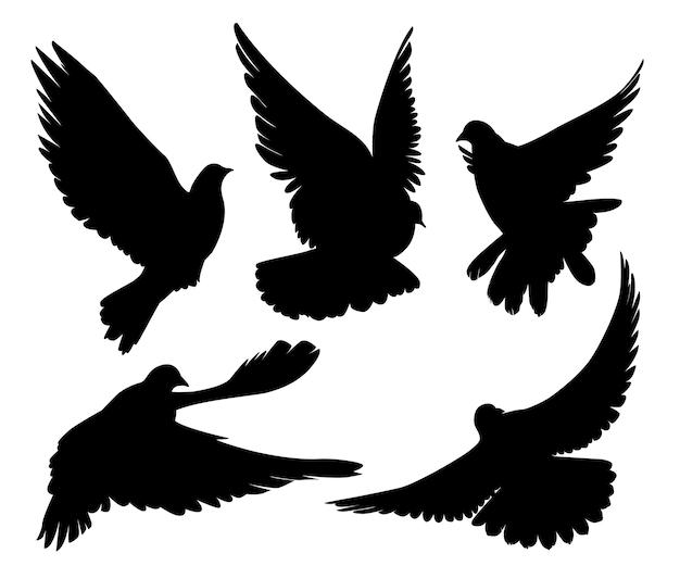 Aantal duiven silhouet Premium Vector