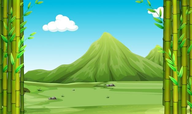 Aardscène met bamboe en heuvels Gratis Vector