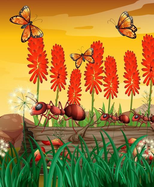 Aardscène met vlinders en mieren op logboek Premium Vector