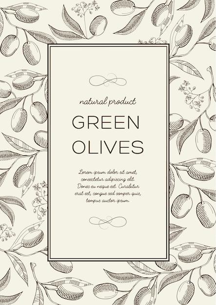 Abstracte botanische natuurlijke poster met tekst in rechthoekig frame en olijftakken in gravurestijl Premium Vector