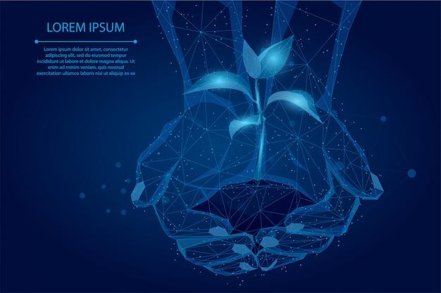 Abstracte brijlijn en punthanden die installatiespruit houden. red de natuur van de planeet, laat het leven groeien Premium Vector