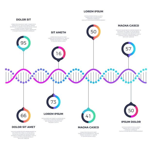 Abstracte dna-bedrijfsmalplaatje infographic met opties Premium Vector