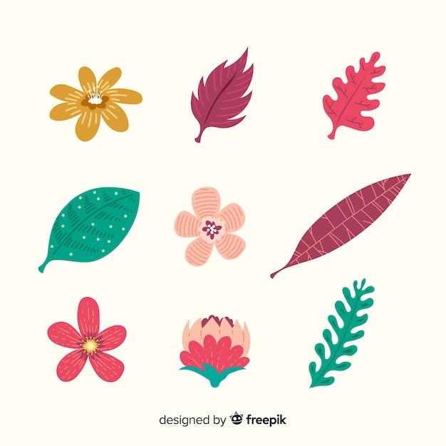 Abstracte hand getrokken bloem en bladinzameling Gratis Vector