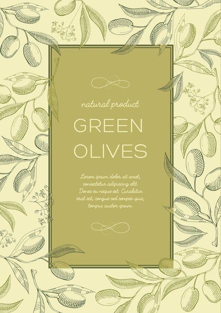 Abstracte vintage natuurlijke groene poster met tekst in frame en olijven boomtakken Gratis Vector