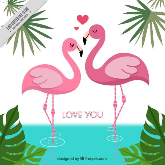 Achtergrond van de flamingo's in de liefde Gratis Vector