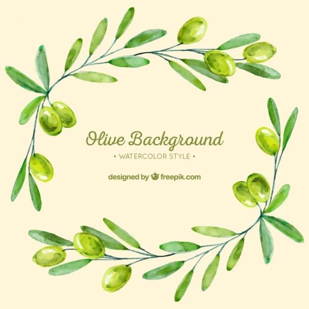 Achtergrond van olijftakken in groene tinten Premium Vector