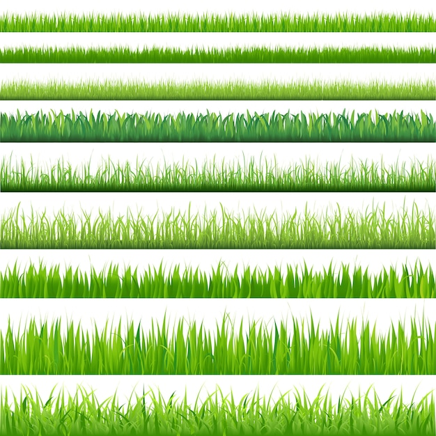 Achtergronden van groen gras, op witte achtergrond, illustratie Premium Vector