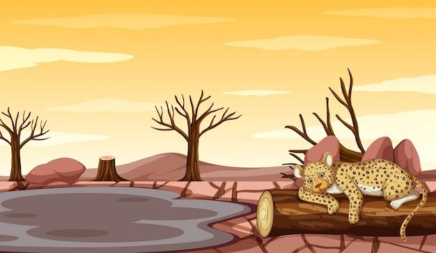 Achtergrondscène met tijger en droogte Gratis Vector