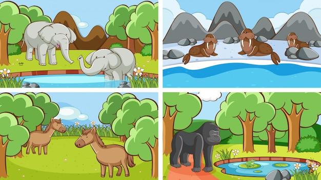 Achtergrondscènes van dieren in het wild Gratis Vector