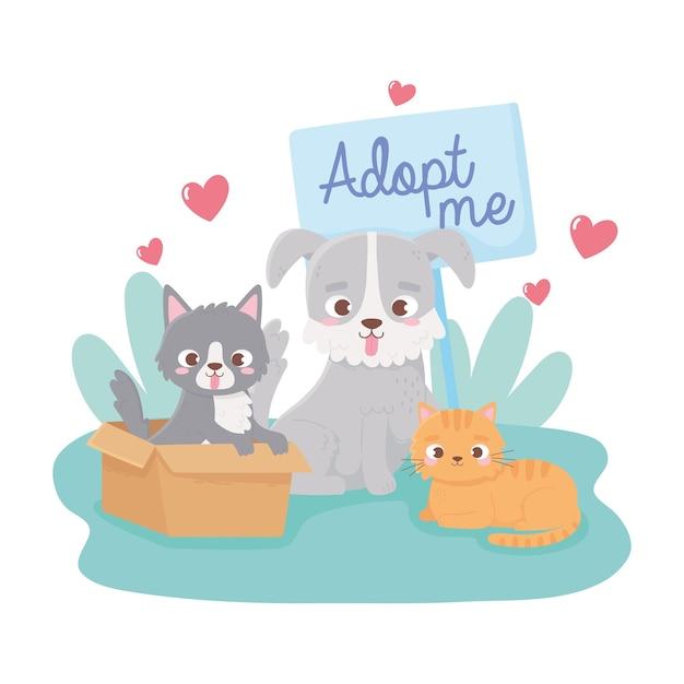 Adopteer een huisdier, kat in doos kleine hond en katje in de grasillustratie Premium Vector