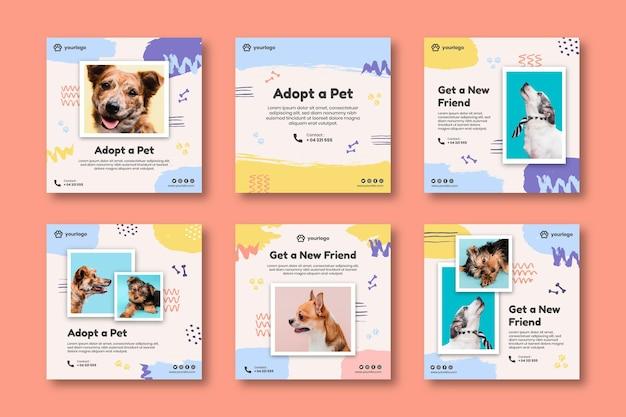 Adopteer een verzameling instagram-berichten voor huisdieren Gratis Vector
