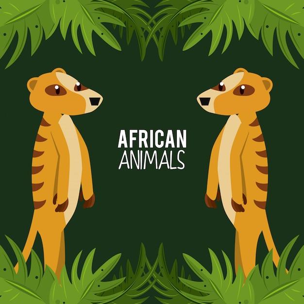 Afrikaanse dieren cartoon Premium Vector