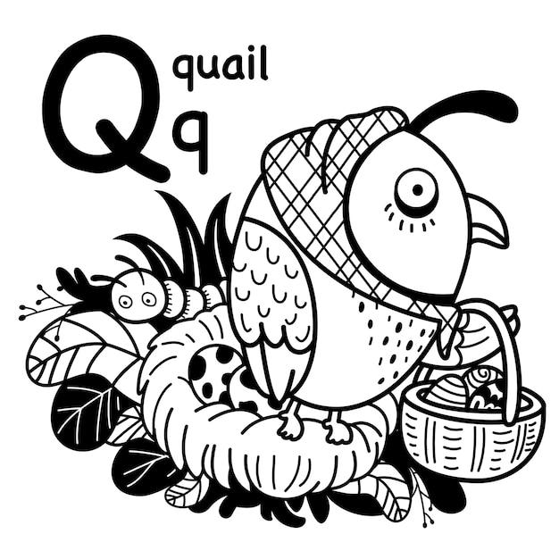 Alfabet letter q kwartel in de hand getrokken Premium Vector