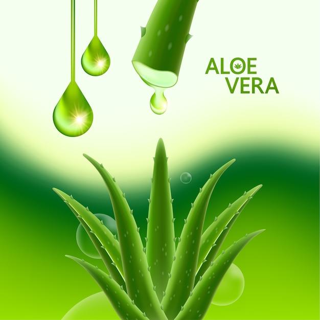 Aloë vera collageen en serum voor cosmetische huidverzorging. Premium Vector