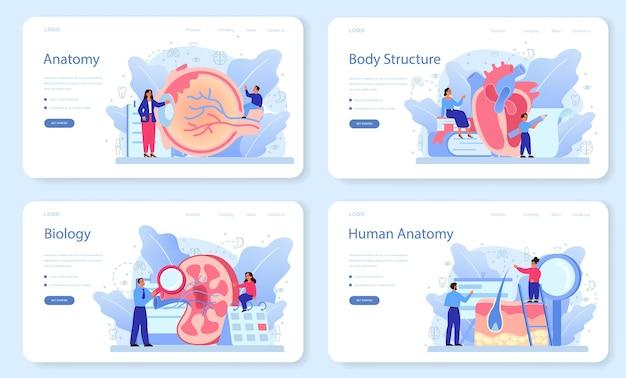 Anatomie schoolvak webbanner of bestemmingspagina-set. intern menselijk orgaan studeren. anatomie en biologie concept. menselijk lichaamssysteem. Premium Vector