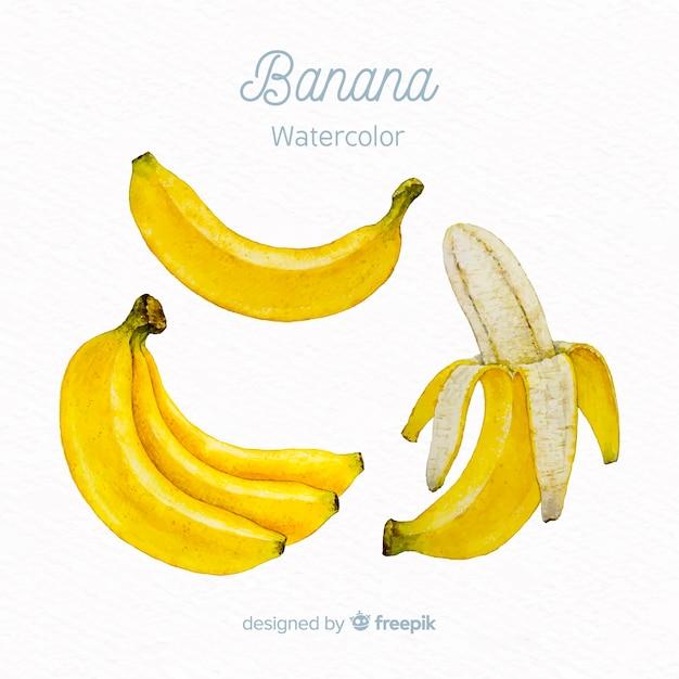 Aquarel banaan Gratis Vector