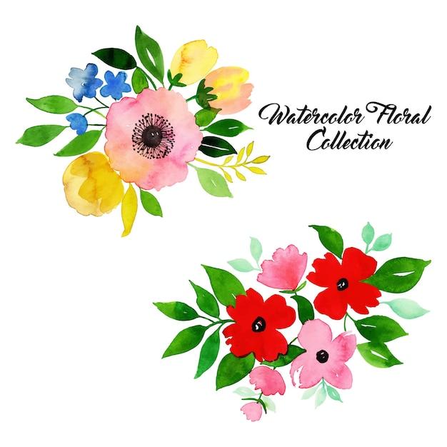 Aquarel bloemen collectie Premium Vector