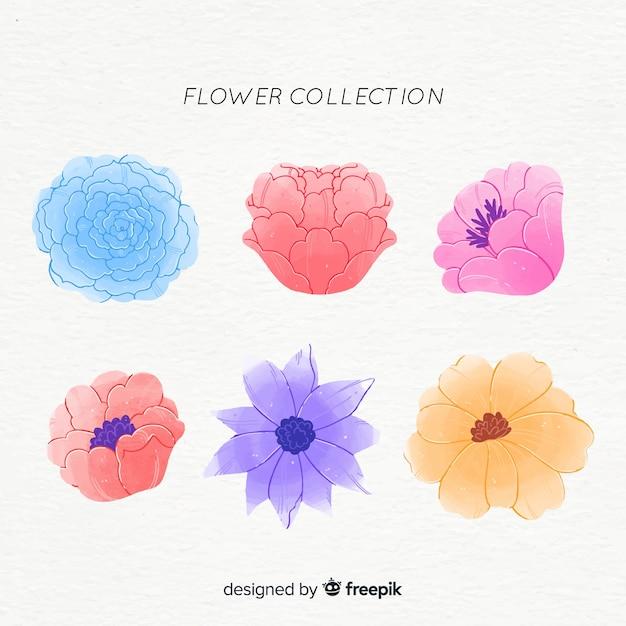 Aquarel bloemenpakket Gratis Vector