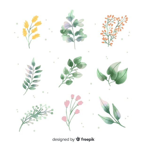 Aquarel bloementak pack Gratis Vector