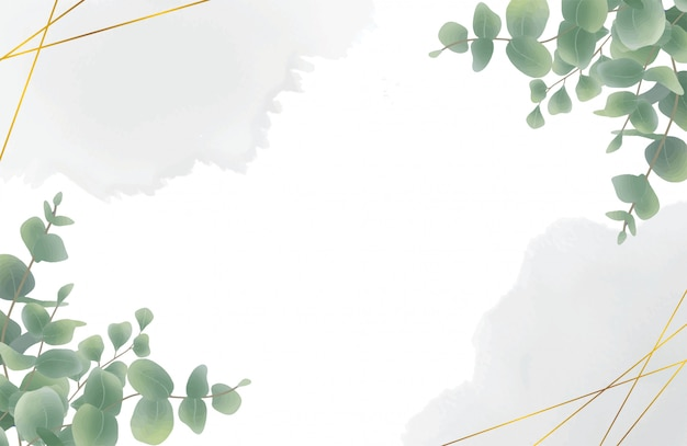 Aquarel eucalyptus blad achtergrond Premium Vector
