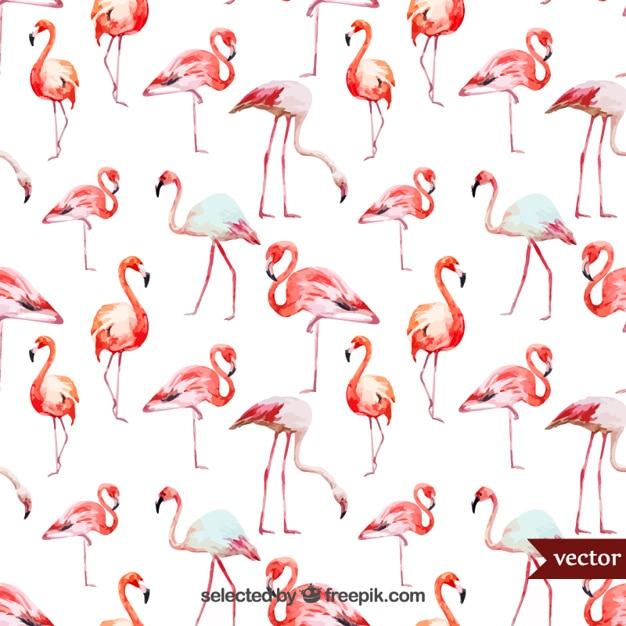 Aquarel flamingo Gratis Vector