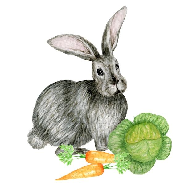 Aquarel grijs konijn illustratie schattig grappig konijntje met wortel geïsoleerd op een witte achtergrond, kaart voor pasen. Premium Vector