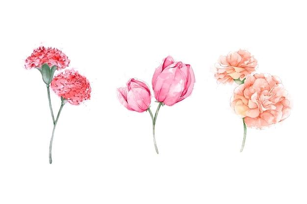 Aquarel lente bloemencollectie Gratis Vector