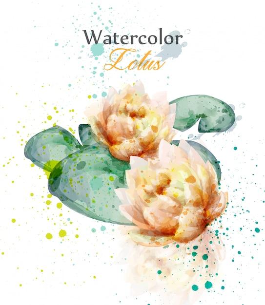 Aquarel lotusbloem Premium Vector