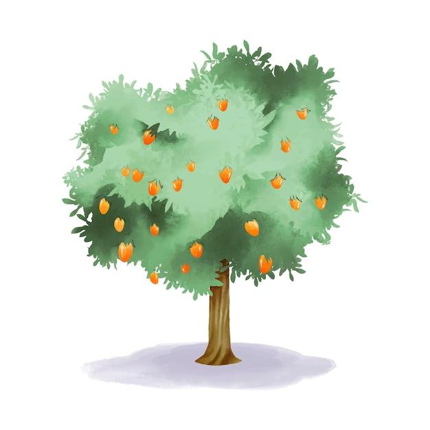 Aquarel mangoboom met fruit en groene bladeren Gratis Vector