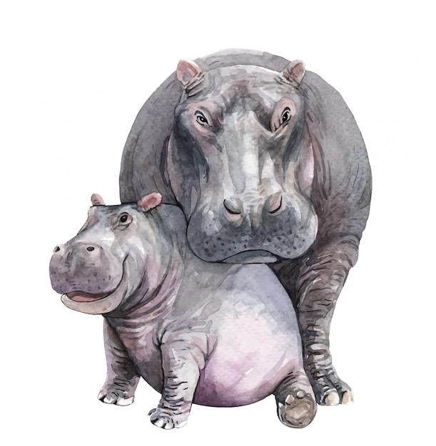 Aquarel moeder en baby nijlpaard Premium Vector