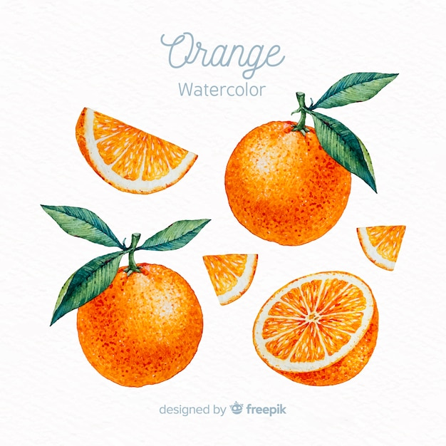Aquarel oranje set Gratis Vector