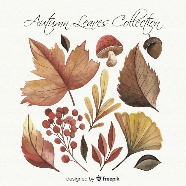 Aquarel stijl herfstbladeren collectie Gratis Vector