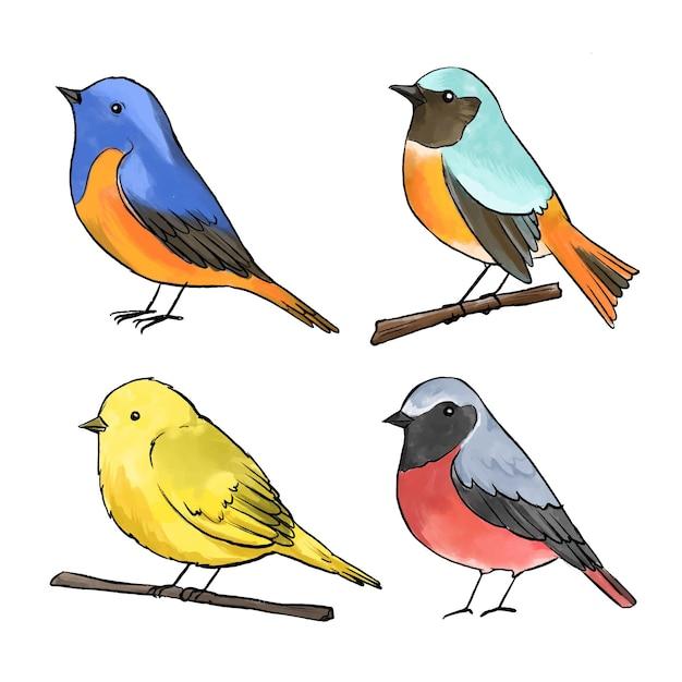 Aquarel vogel collectie concept Gratis Vector