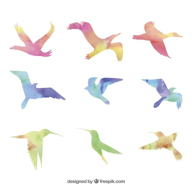 Aquarel vogels Gratis Vector