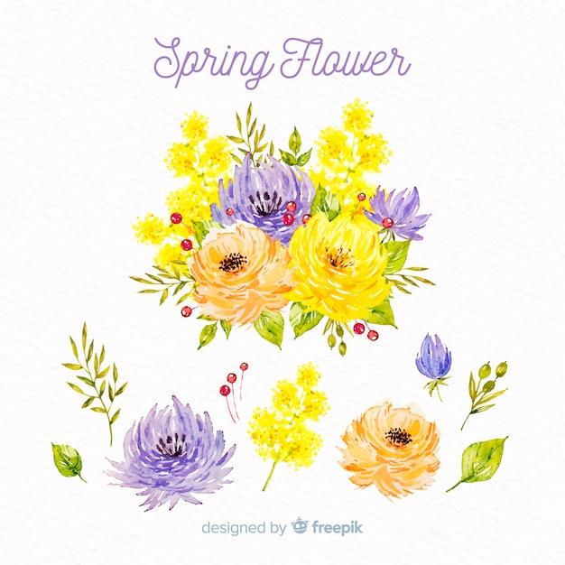Aquarel voorjaarsbloemen collectie Gratis Vector